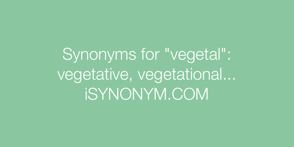 Synonyms vegetal