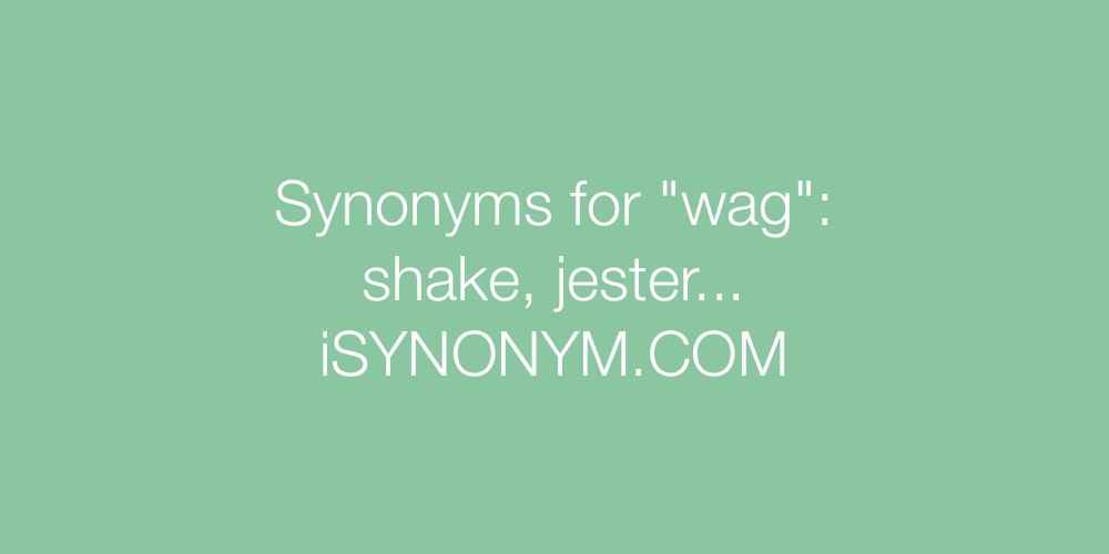Synonyms wag