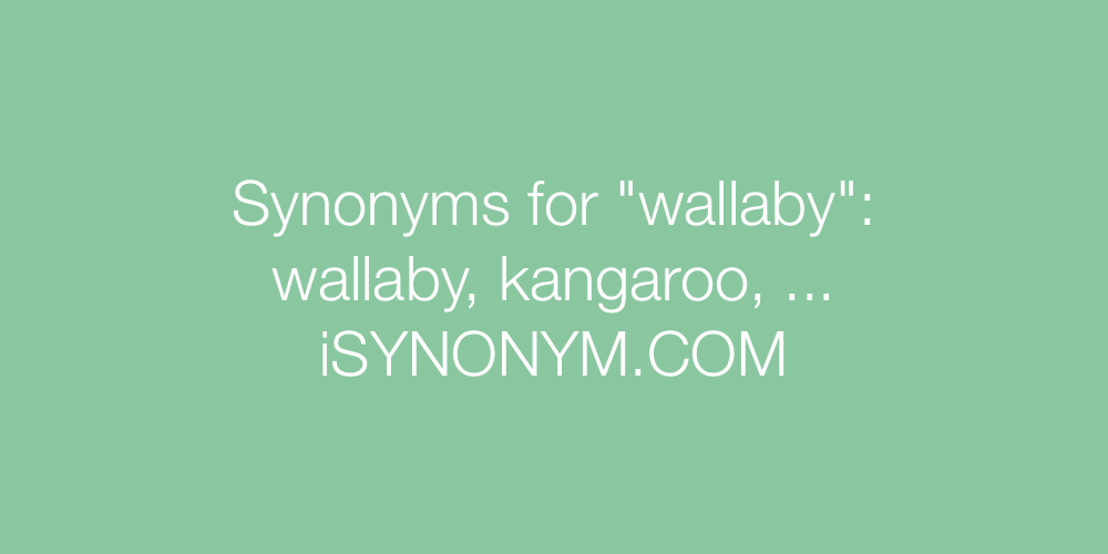 Synonyms wallaby
