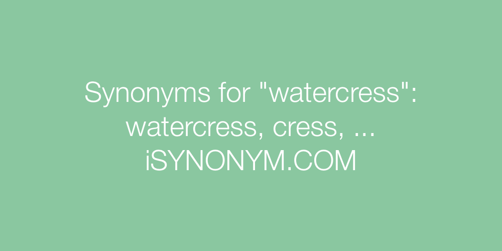 Synonyms watercress