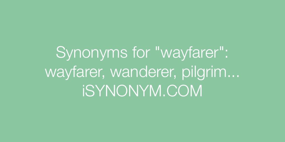 Synonyms wayfarer