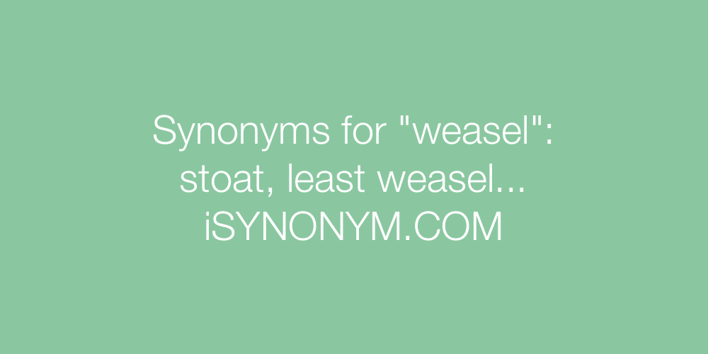 Synonyms weasel