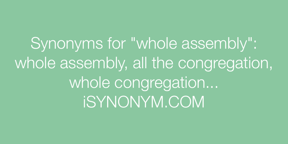 Synonyms whole assembly