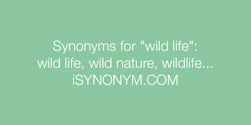 Synonyms wild life