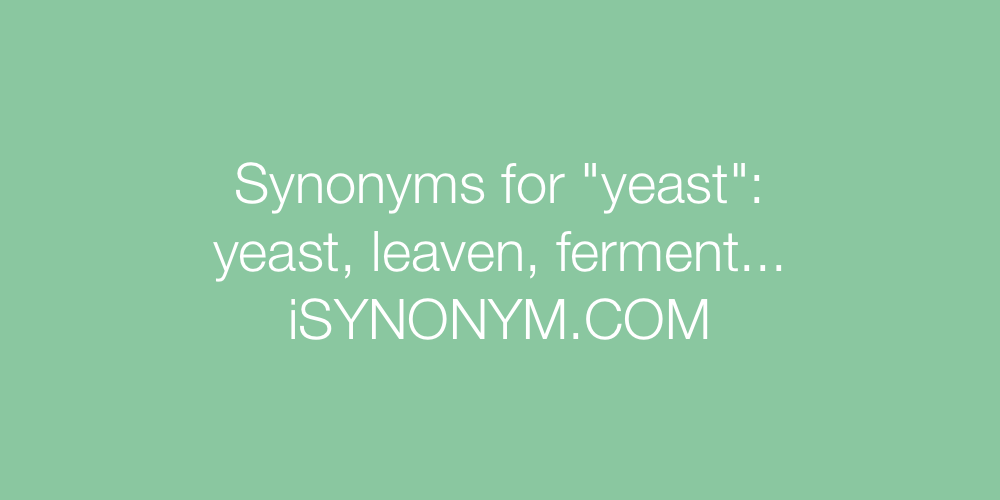 Synonyms yeast