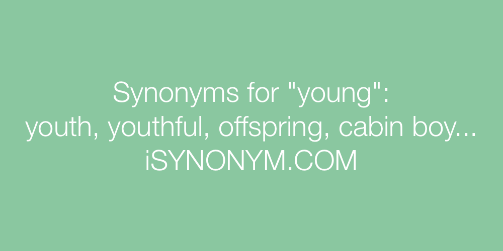 Synonyms young