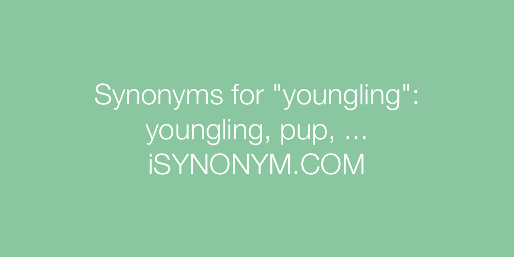 Synonyms youngling